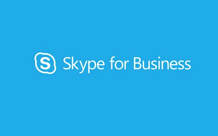 Skype video conferencing software